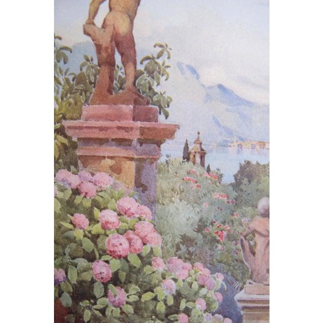 Belle Epoque 1905 Ella du Cane Print, Hydrangeas, Isola Bella, Lago Maggiore For Sale - Image 3 of 4