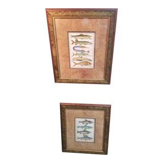 Pair of Hand Colored 18th C Fish Prints For Sale