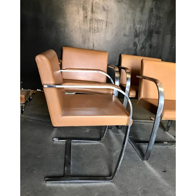 """Knoll Mies Van Der Rohe for Knoll Studio """"Brno Flat Bar"""" Lounge Armchair in Leather For Sale - Image 4 of 6"""