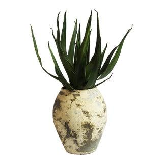 Earth Ware Vase & Faux Aloe Vera For Sale