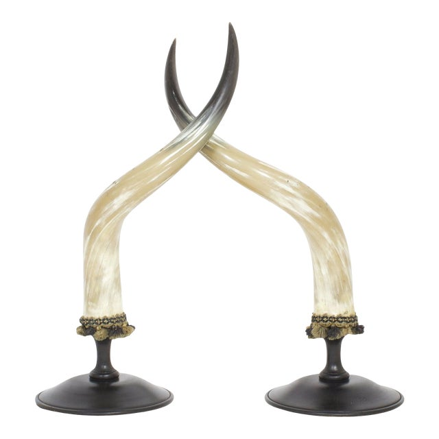 Mid-Century Large and Dramatic Polished Horns on Mounts - A Pair For Sale