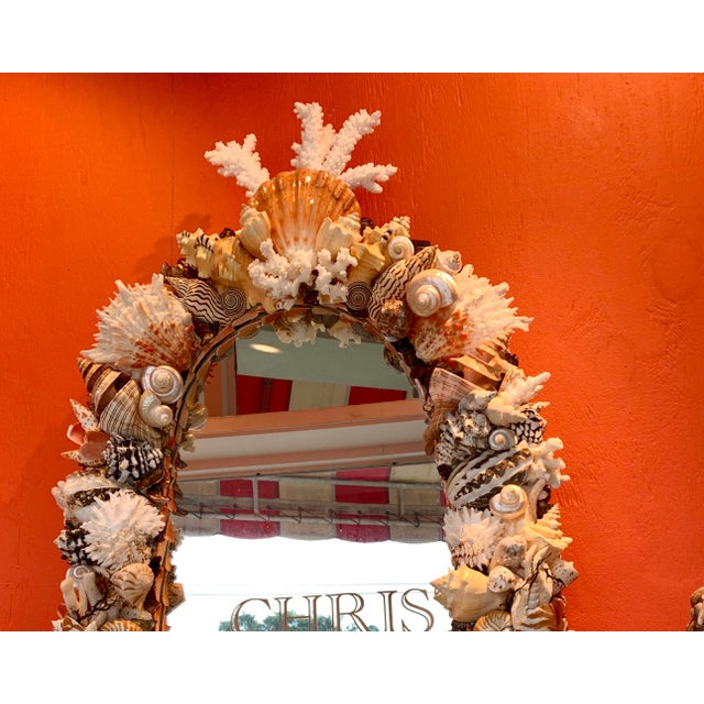 Contemporary Oval Seashell Encrusted Wall Mirror For Sale - Image 3 of 10