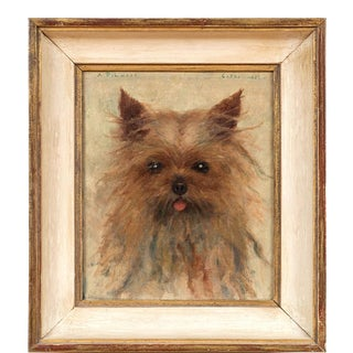 Dog Portrait of a Yorkshire Terrier by Alfred Pike Lucas (American, 1862–1945) For Sale