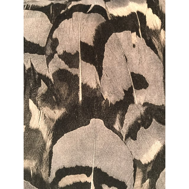 Stunning Scalamandre feather print on velvet in grays tones & black create a beautiful lumbar pillow with a flange edge....