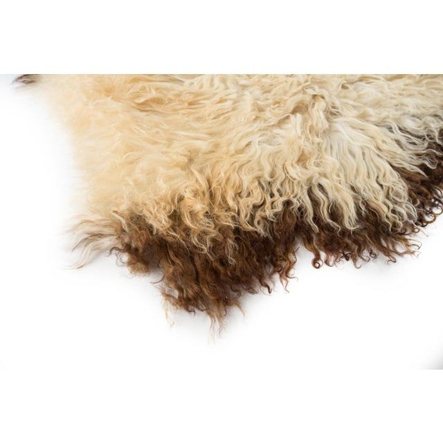 "2010s Contemporary Long Soft Wool Sheepskin Pelt - 2'0""x3'2"" For Sale - Image 5 of 7"