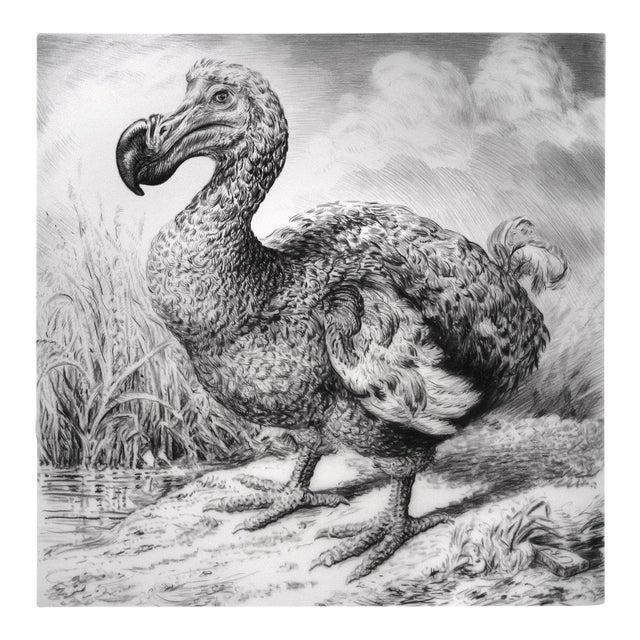 """Contemporary """"Dodo I"""" Rick Shaefer Charcoal Print For Sale"""