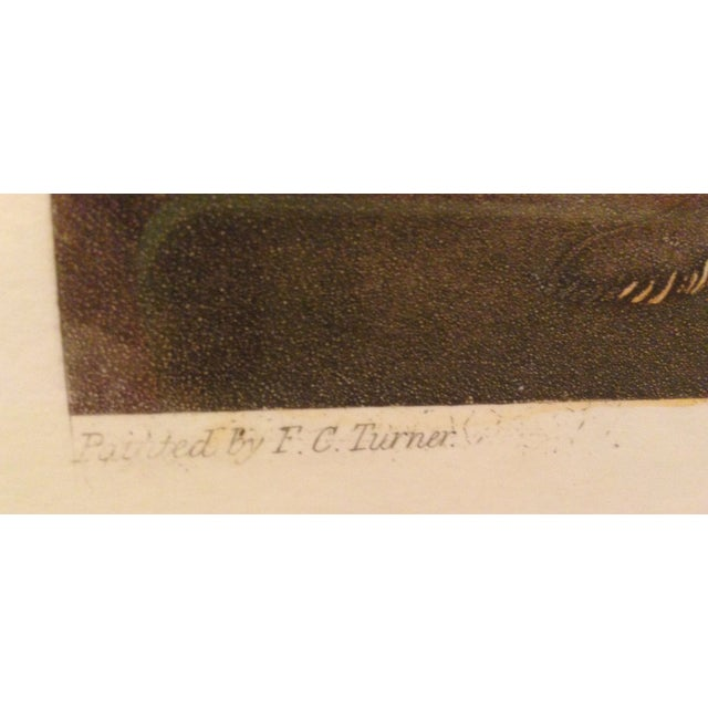 Fc Turner English Horse Shoeing Engraving - Image 6 of 8