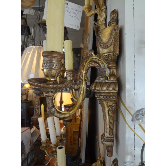 Late 19th Century Louis XVI Style Pair of Gilt Wood Sconces For Sale - Image 5 of 11