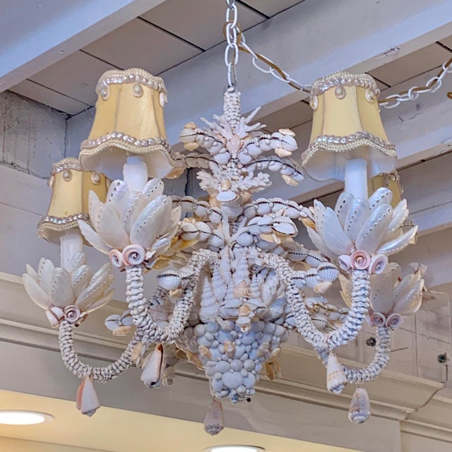 Small Five-Light Shell Adorned Chandelier For Sale - Image 9 of 9