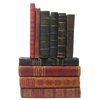 Antique French Book Collection, S/10 For Sale
