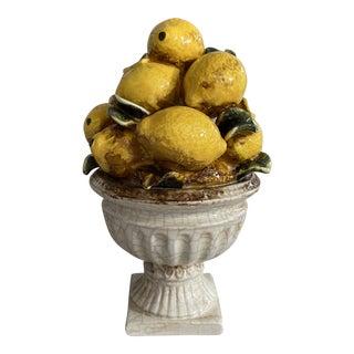 Italian Lemon Topiary For Sale