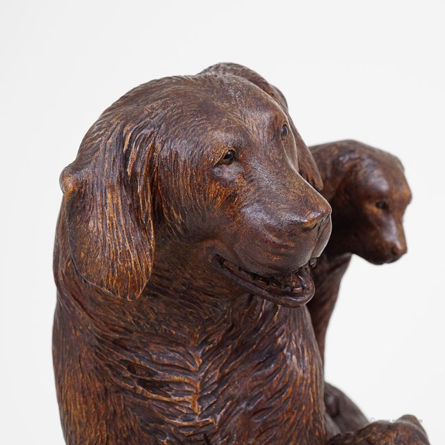 Black Forest Carved Mother Dog With Puppies - Brienz Ca. 1900 For Sale - Image 6 of 10