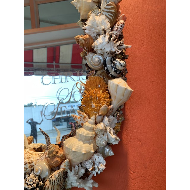 Oval Seashell Encrusted Wall Mirror For Sale - Image 9 of 10