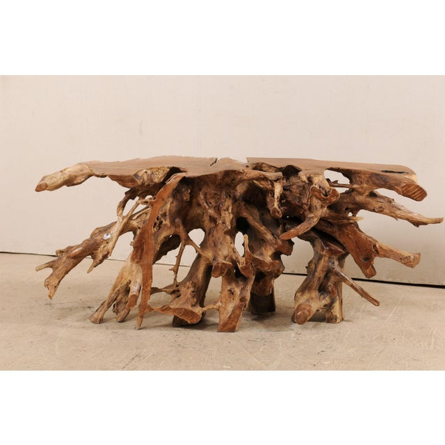 Tropical Hardwood Teak Root Console Table For Sale - Image 4 of 12