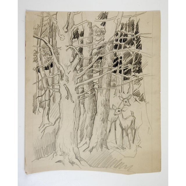 Pencil study of deer in a forest by George Baer (1895-1971). Unsigned, from the artists estate. Unframed, age toning,...
