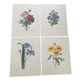 Set of 4 Large Unframed Botanical Prints II For Sale