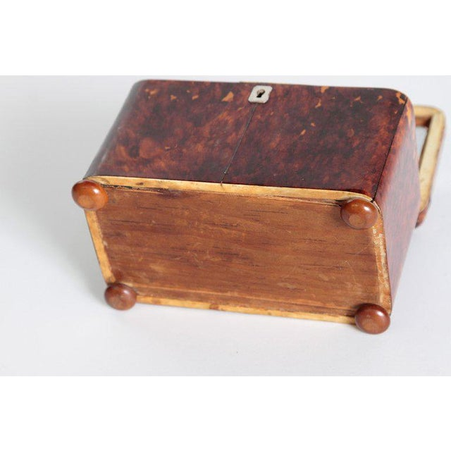 Early 19th Century English Regency Tortoiseshell Tea Caddy For Sale - Image 12 of 13
