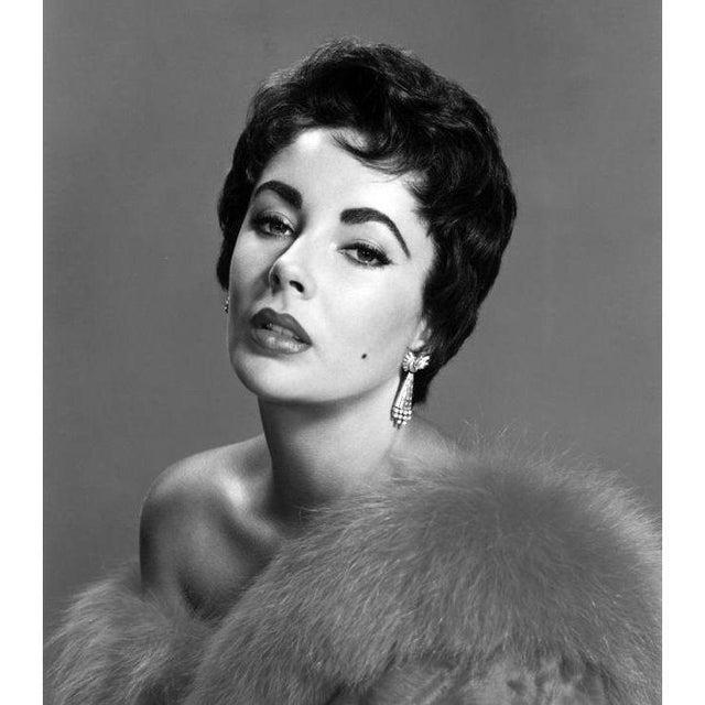 1950s Elizabeth Taylor circa 1953 For Sale - Image 5 of 5