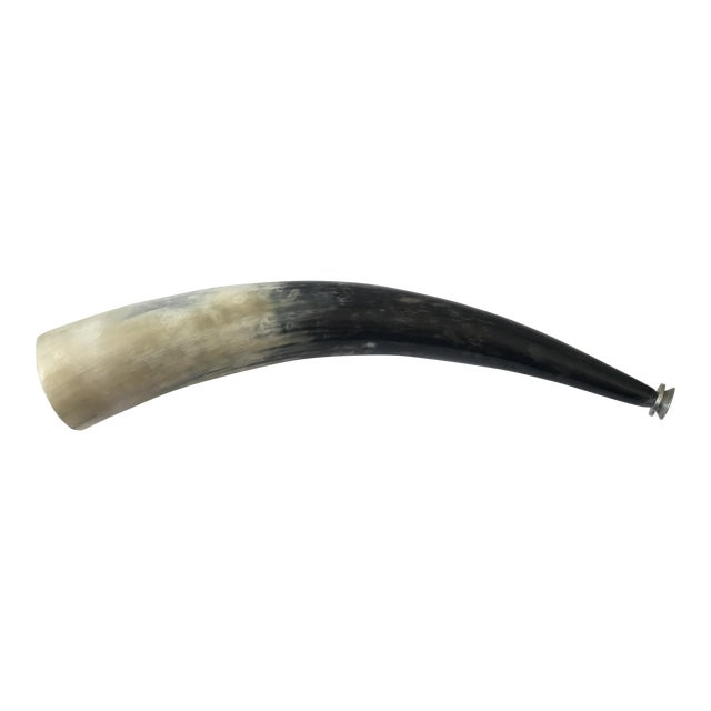 Decorative Polished Horn - Image 1 of 8