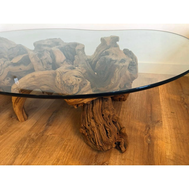 Vintage Burl Wood Root and Tempered Glass Coffee Table. For Sale - Image 4 of 10