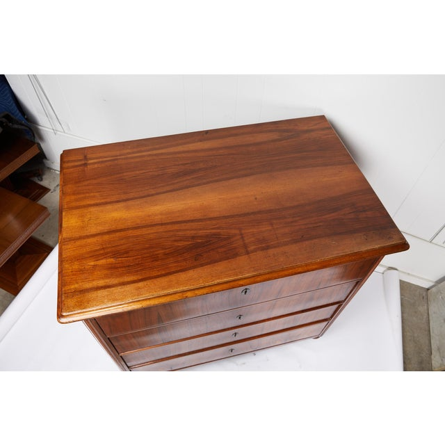 Large 19th Century Biedermeier Commode of Rosewood For Sale - Image 11 of 13