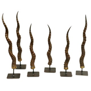 Black Buck Antelope Horns on Steel Stands For Sale