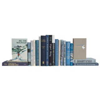 Winter Mountain Outdoor Adventure Book Set, (S/20) For Sale
