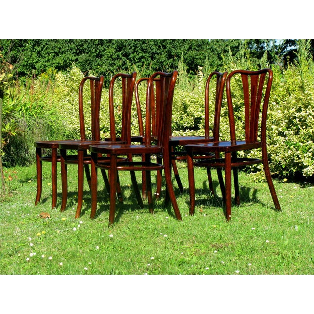Vintage Dining Chairs by Thonet, 1930s - Set of 6 For Sale - Image 10 of 11