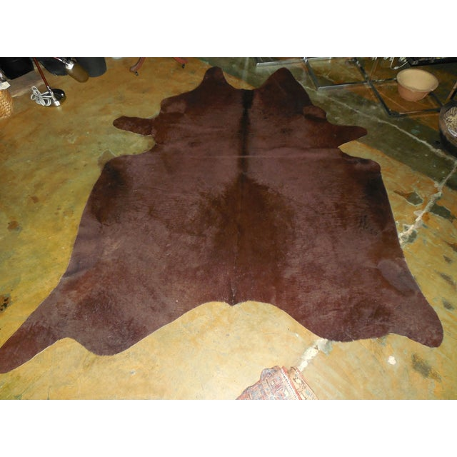 Large Chocolate Brown Cowhide Rug - 7′7″ × 8′10″ - Image 6 of 8