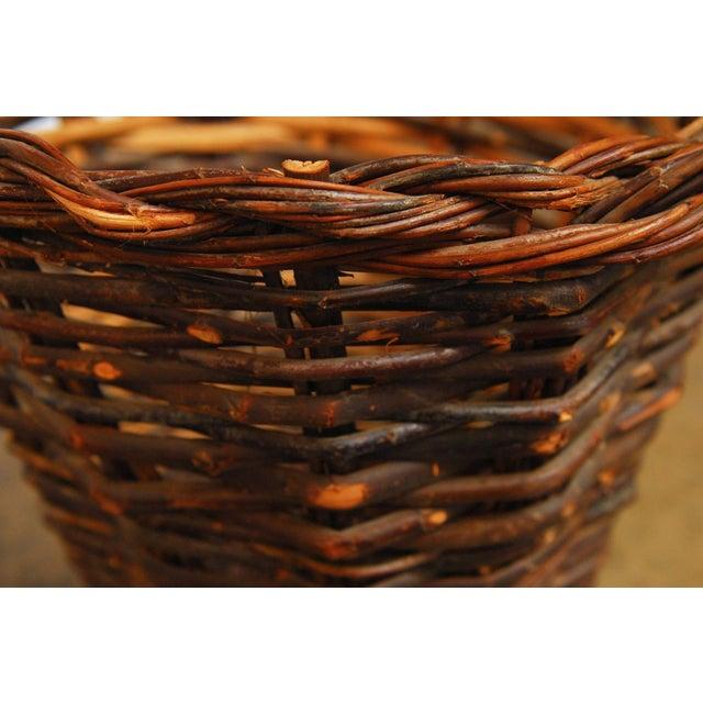 French Vineyard Harvest Basket - Image 5 of 5