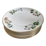 Image of Mid 20th Century Minton China Botanical Plates - Set of 8 For Sale