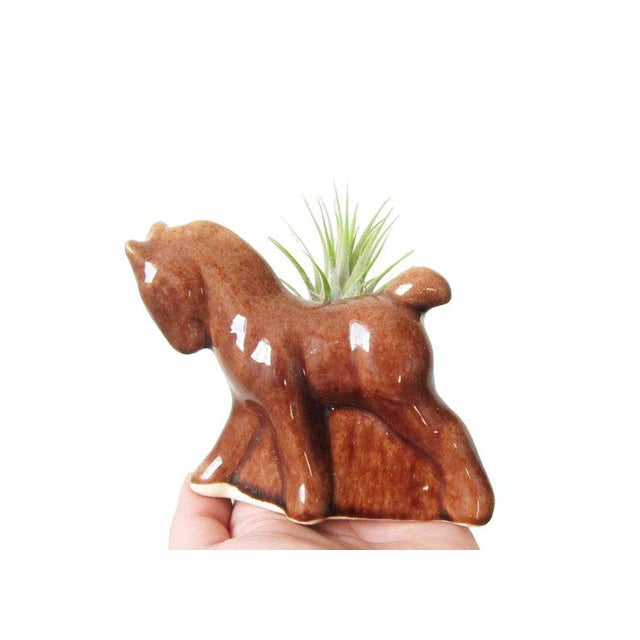 This adorable vintage horse planter is the perfect way to display your favorite succulent plants, kitchen herbs, pens and...