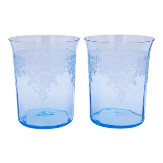 Mid 20th Century Light Blue Etched Tumbler Glasses - Set of 2 For Sale