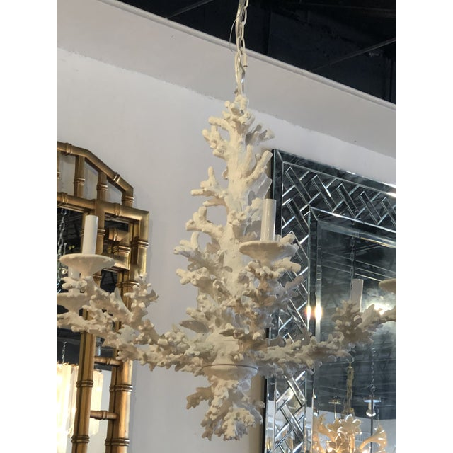 Vintage Palm Beach Tropical White Faux Coral 6 Light Chandelier For Sale In West Palm - Image 6 of 11