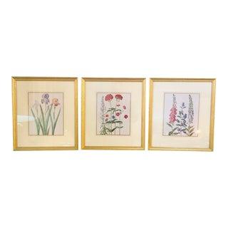 Traditional Floral Botanical Prints - Set of 3 For Sale