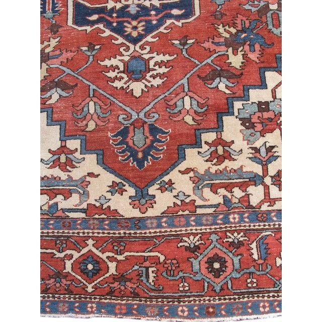 Serapi Carpet For Sale In San Francisco - Image 6 of 6
