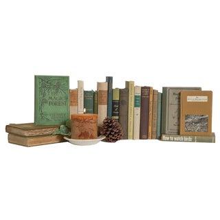 Vintage Lovers Book Set, (S/20) For Sale