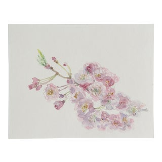 Full Cherry Blossoms Watercolor Painting For Sale