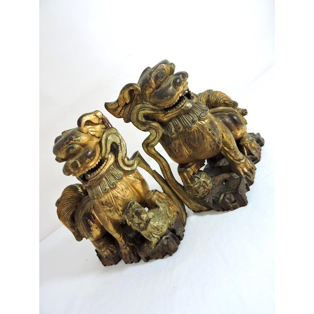 Wood Antique Chinese Carved Gilt Wood Temple Foo Lions- a Pair (Foo Dogs) For Sale - Image 7 of 9