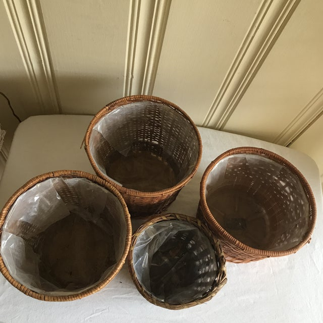 Boho Wicker Plant Vessels - Set of 4 - Image 4 of 6