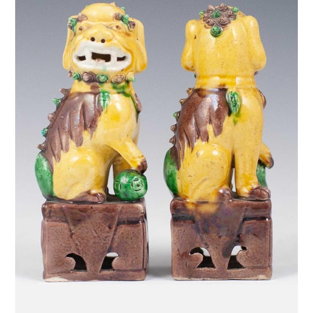 Mid 20th Century 20th Century Chinese Sancai Glazed Porcelain Foo Dogs - a Pair For Sale - Image 5 of 7