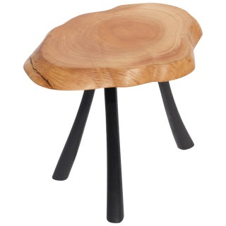Unique Bog Oak and Olive Table by Jörg Pietschmann For Sale