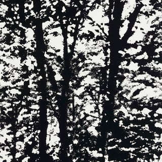 Schumacher Woodland Wallpaper in Night For Sale
