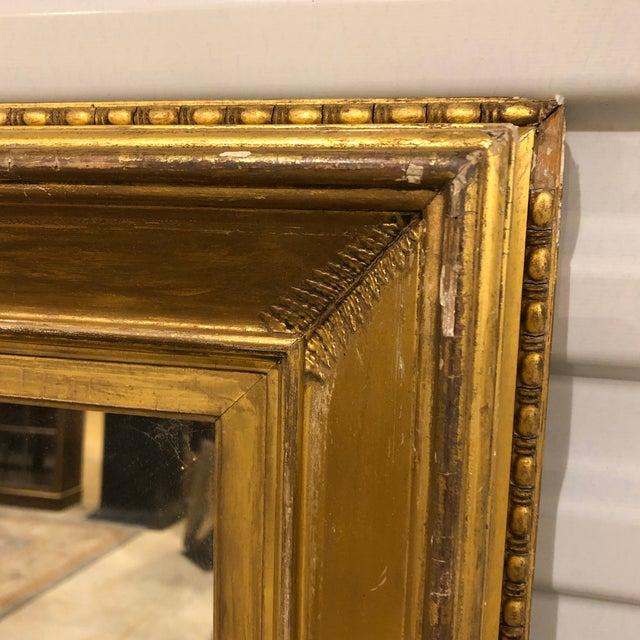 Regency period fern frond gold gilt framed mirror. Original label on back. Alexander Boyle, gilder & picture frame maker....