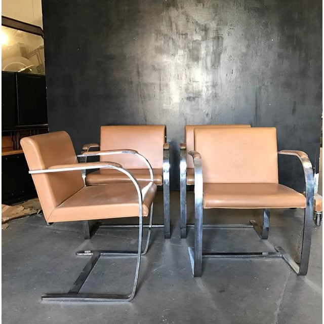 High End Mies Van Der Rohe For Knoll Studio Brno Flat Bar Lounge