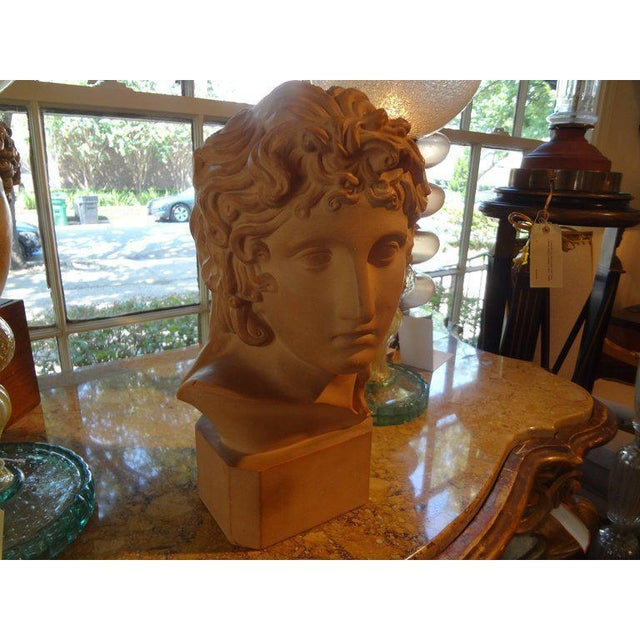 Figurative 1920's Antique French Classical Inspired Terra Cotta Bust For Sale - Image 3 of 8