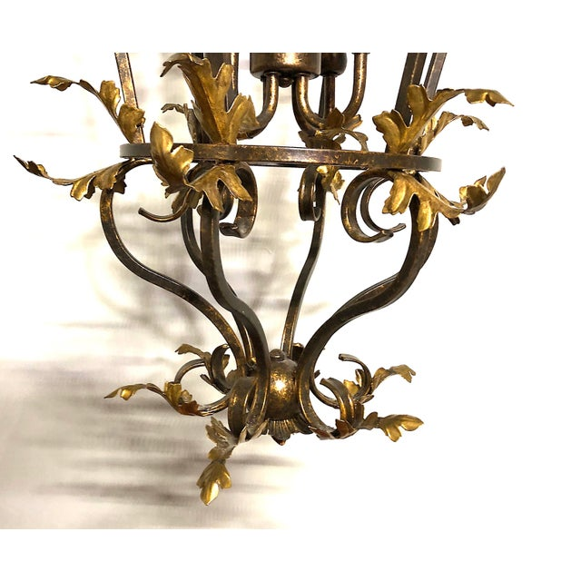 Late 20th Century Late 20th Century Venetian Iron and Gilded Tole Foliate Hanging Lantern For Sale - Image 5 of 10