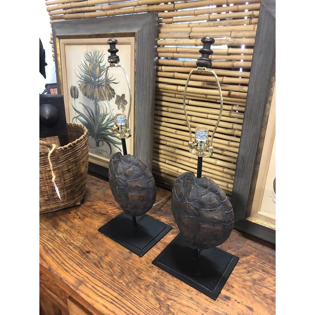 Pair of faux turtle shell lamps, no shades included. Faux turtle shell mounted on iron stand