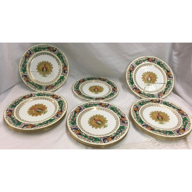12 Wedgwood Peacock Plates Handpainted For Sale - Image 11 of 11