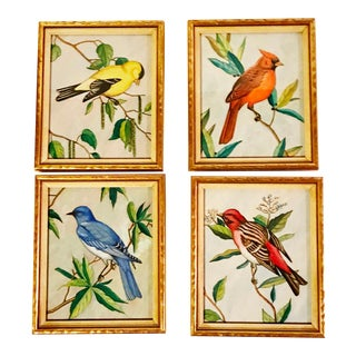 Four Vintage Original Paintings of Birds in Gold Frames